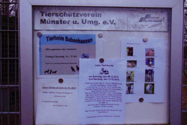 12-11-23-sa-babenhausen-1B53C35F0-658F-F3A7-8F21-D441D31F7274.jpg